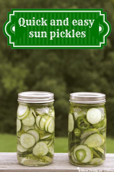 dill sun pickles