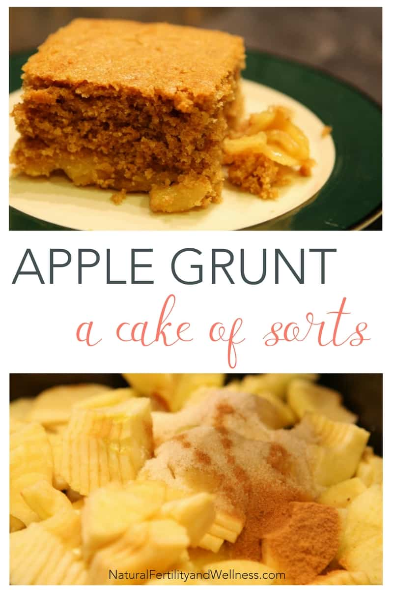 apple cake also known as apple grunt