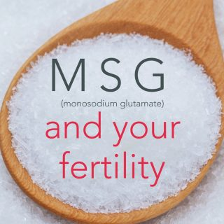 MSG and fertility