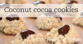 coconut cookie