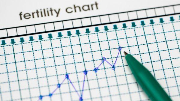 fertility chart