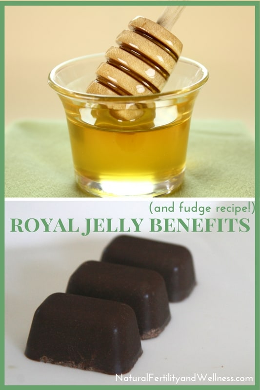 Royal Jelly Benefits (and a fudge recipe!)