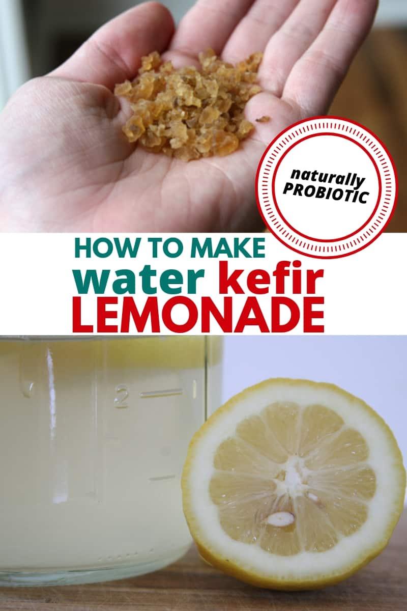 water kefir grains and lemonade
