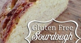 Gluten Free Sourdough Bread, artisan style {recipe}
