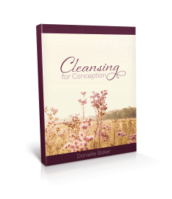 Cleansing For Conception
