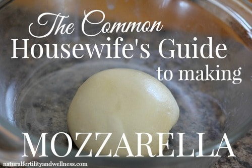 The common housewife's guide to making mozzarella