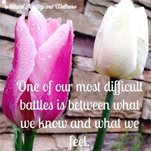 One of our most difficult battles is between what we know and what we feel.