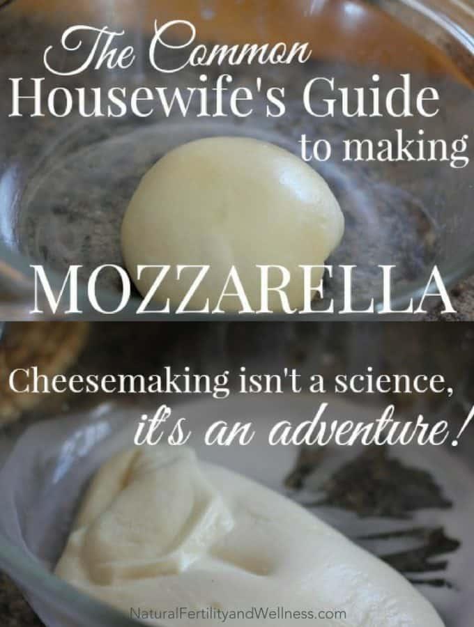 guide to making mozzarella