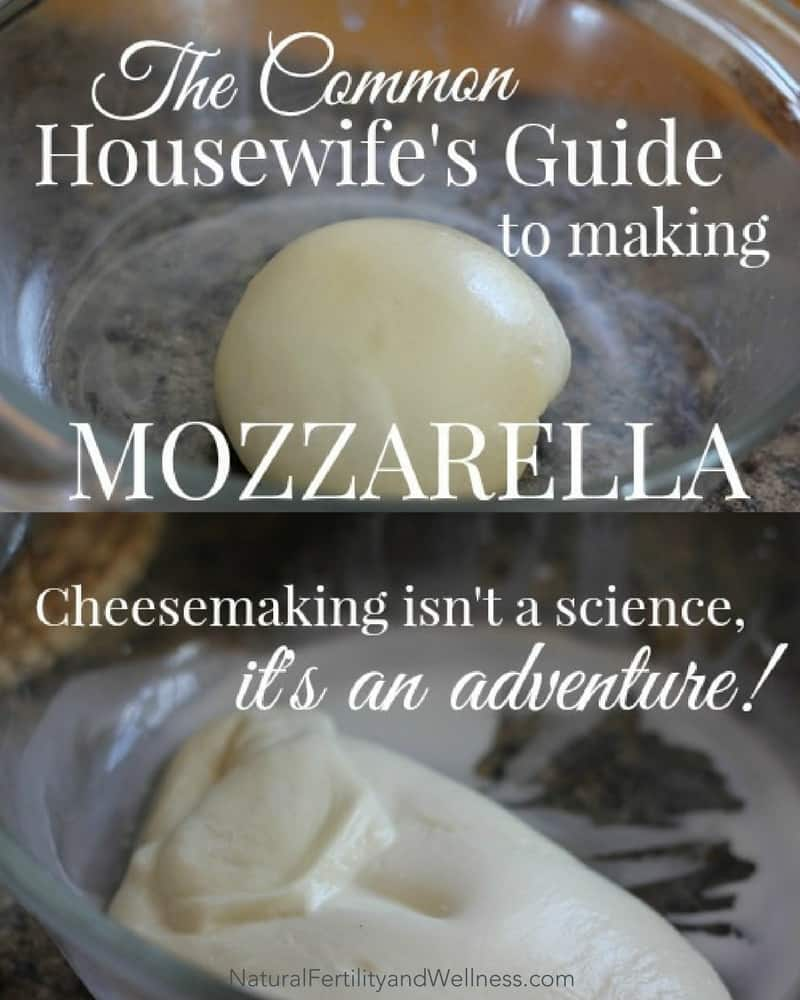 guide to making mozzarella