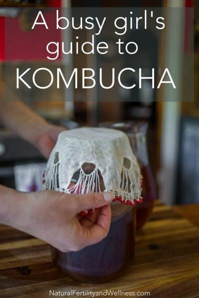 guide to making kombucha