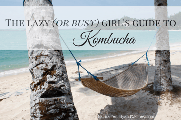 guide to kombucha