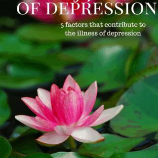contributing factors in depression