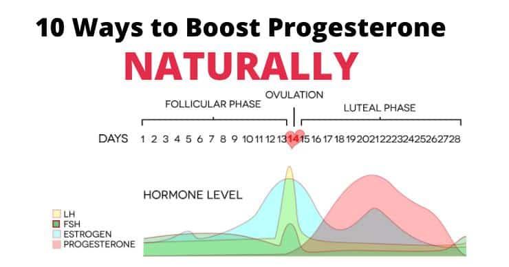 hormone chart/graph